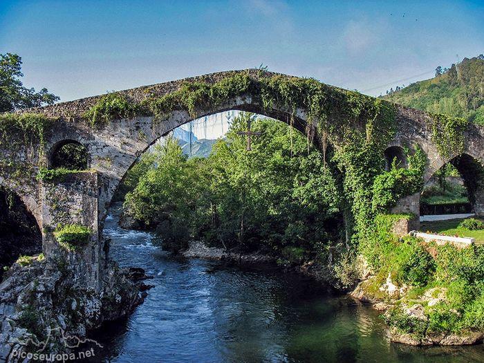 ¿Asturias o Galicia? - 1