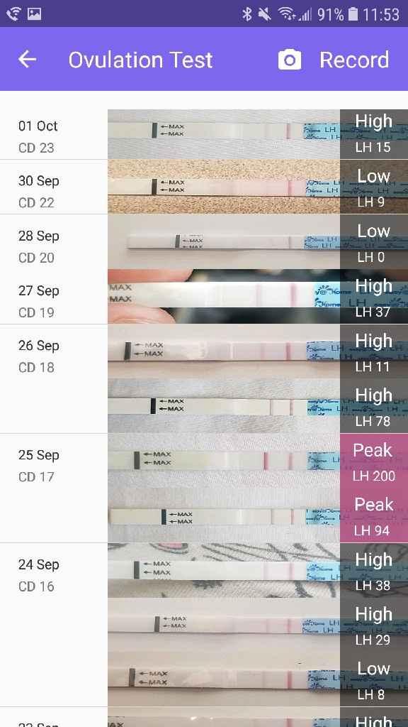Entender gráficos de ovulación (tos y temperatura basal) - 1
