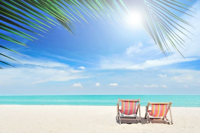 Novi@s Riviera Maya 2020: ¡Preséntate! 1
