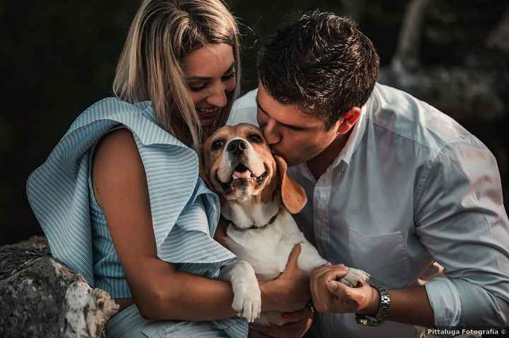 ¡GUAU! ¿Habrá perritos en vuestra boda? 🐶 - 1