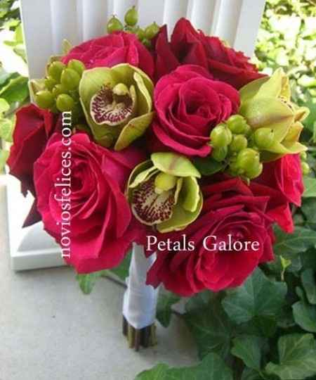 rosas fucsia 1