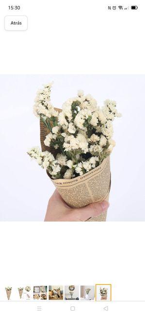 ¿Sabéis que planta/flor es? 2