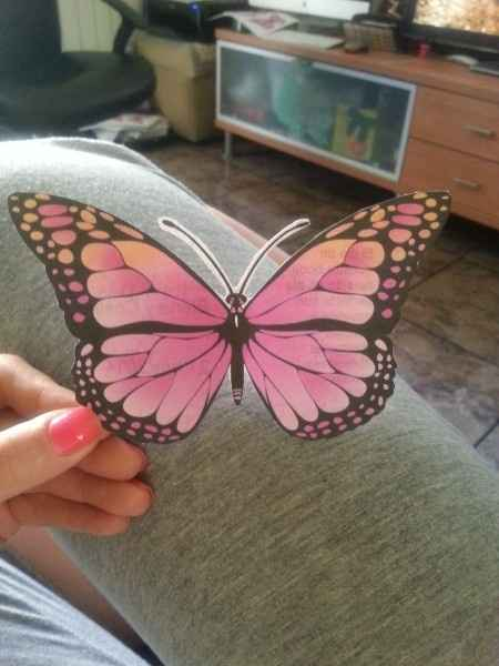 Plantilla mariposas - 4