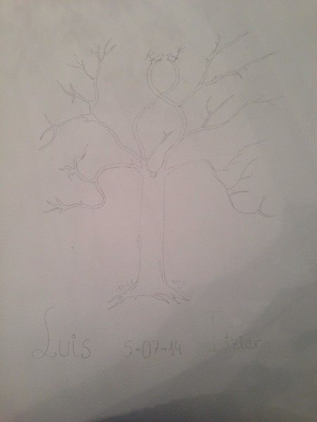 Árbol huellas manual - 1