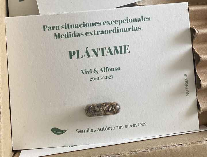 Invitaciones plantables - 1