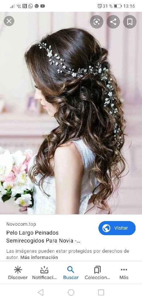 Tema peinado y decoración pelo - 1