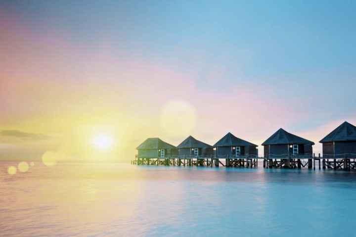 Novi@s Tailandia + Maldivas 2020: ¡Preséntate! - 1