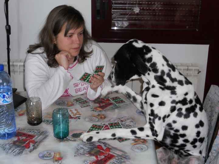 jugando a las cartas...