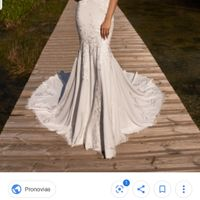 Duda entre vestidos Pronovias - 1