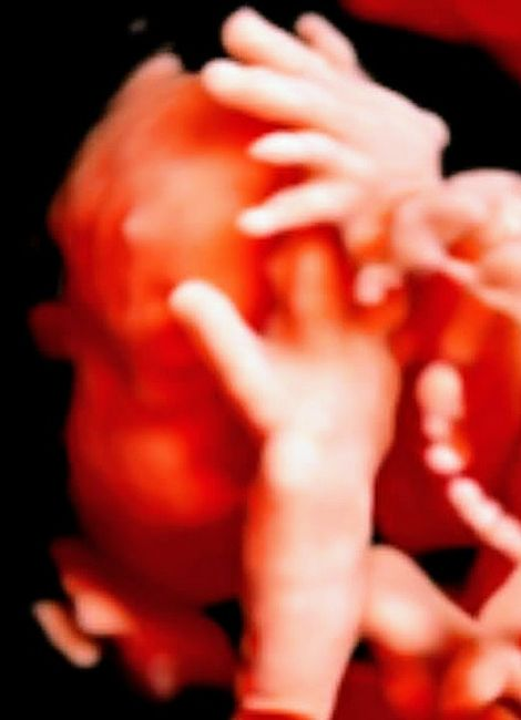 Futuras mamas septiembre 2021🤰🤱 - 3