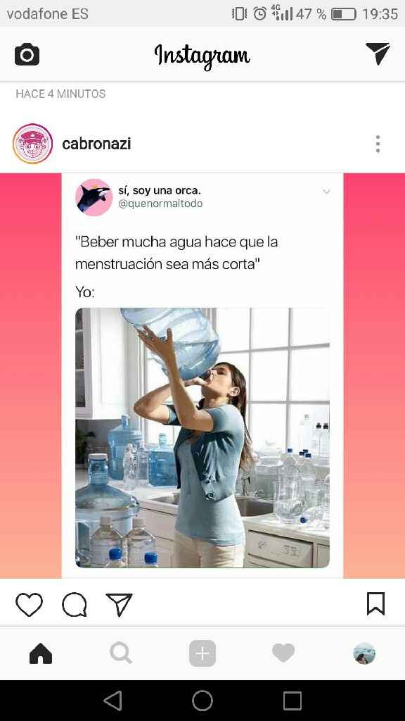 Buscadoras Mayo 2019 - 1