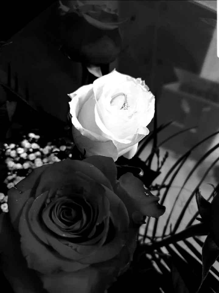 CONCURSO: ¡Cuéntanos tu pedida y GANA la web de boda Premium! 💍 11