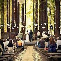 Decoración boda en el bosque - 1