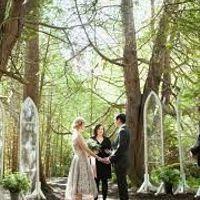 Decoración boda en el bosque - 3