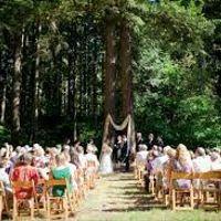 Decoración boda en el bosque - 5