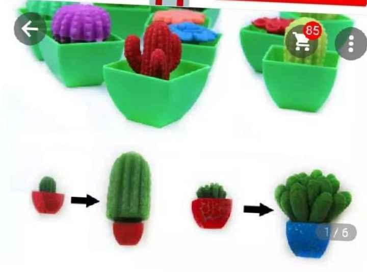 Cactus Aliexpress - 1