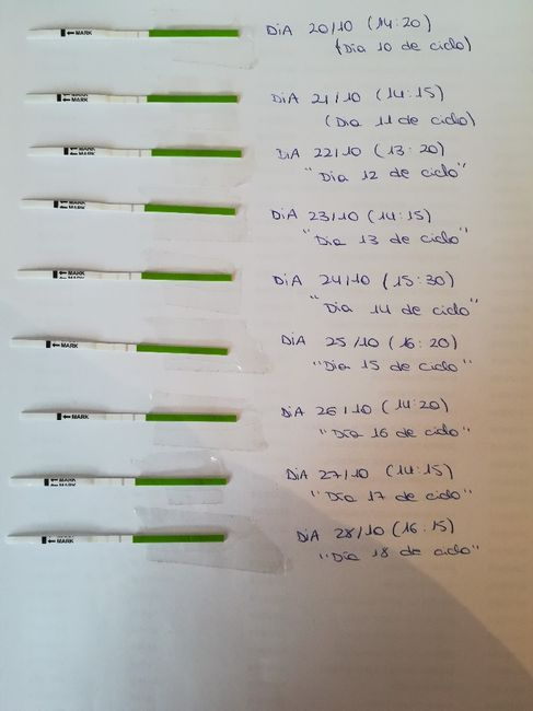 Test ovulacion siempre negativos 1