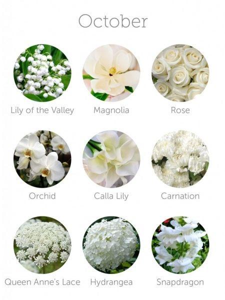 Wedding Flowers Available In October In Australia : Flores para tu boda seg?n el mes en que te casas