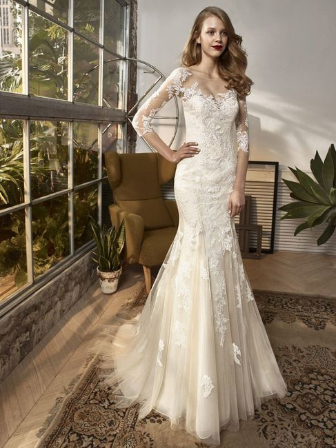Este vestido: ¿Lo amas o lo odias? 1