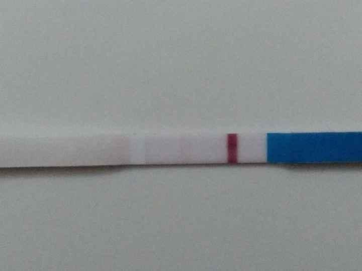 Buscadoras de un primer embarazo y tras muchos intentos no llega - 2