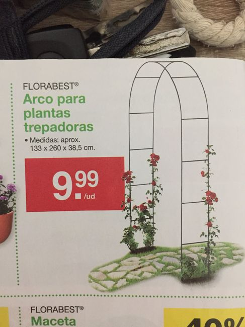 arco lidl os odio a tods 1 - Lidl Jardin