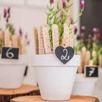 Meseros con plantas DIY