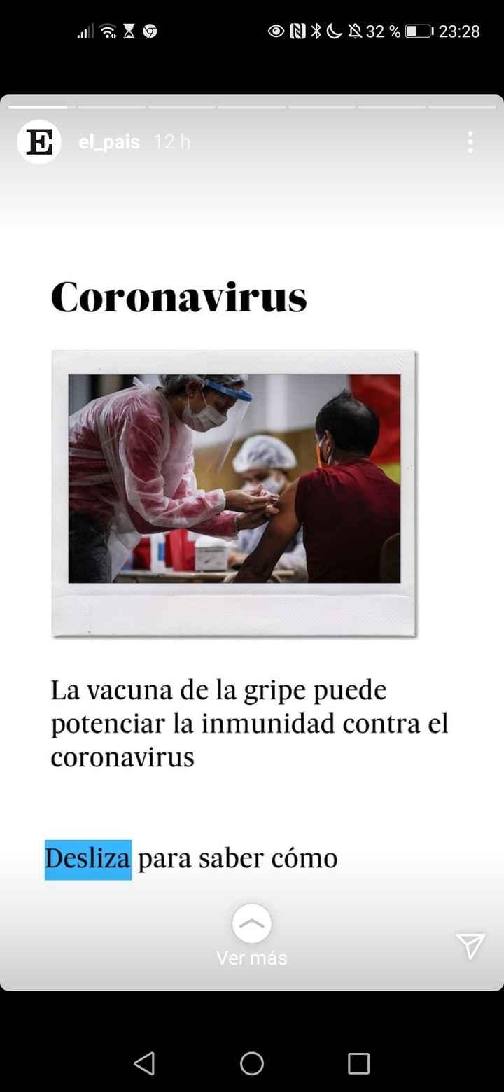 Vacuna de la gripe 1