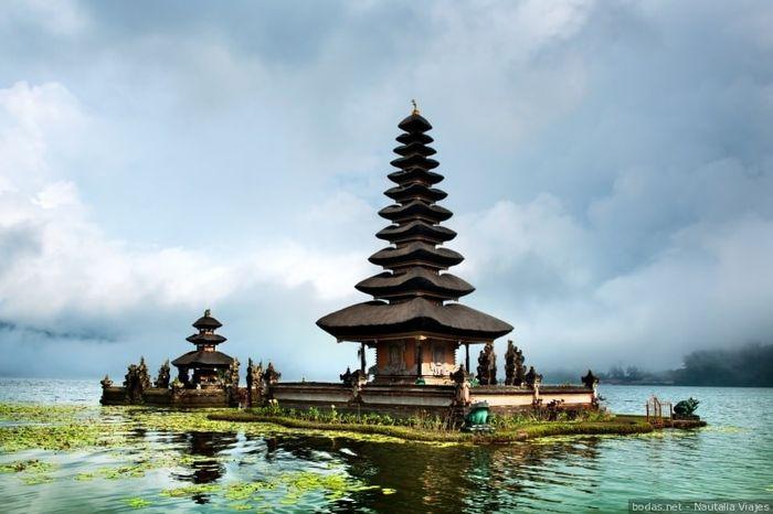 Novi@s Bali 2020: ¡Preséntate! 1