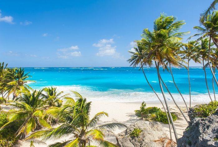 Novi@s Crucero por el Caribe 2020: ¡Preséntate! 1