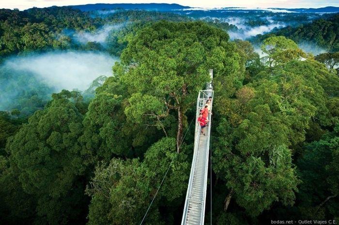 Novi@s Costa Rica 2020: ¡Preséntate! 1