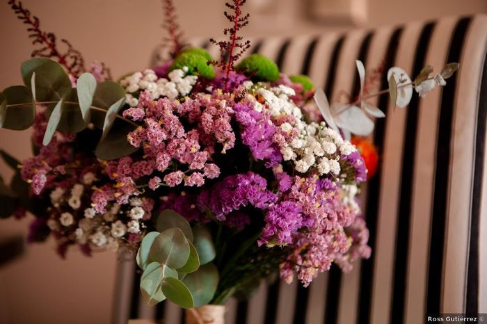 La paniculata, ¿blanca o rosa? 1