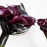 ramo rosa negro