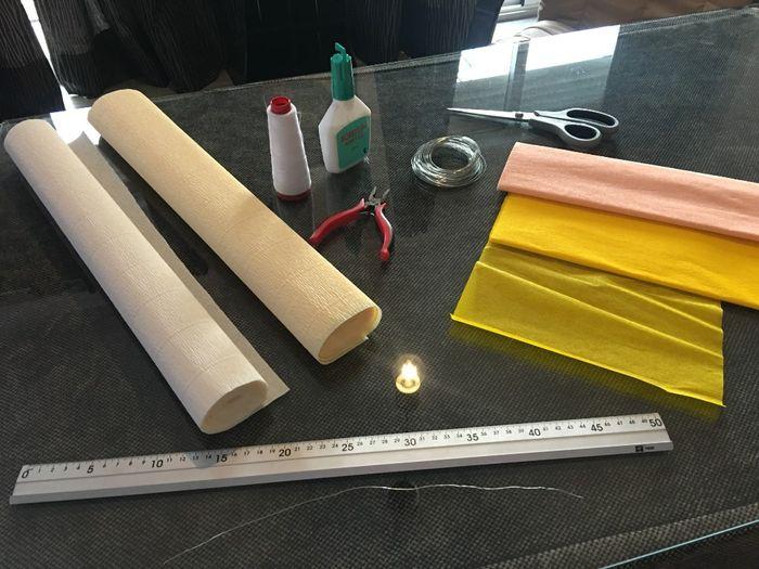 Tutorial para hacer peonías de papel crepé 1
