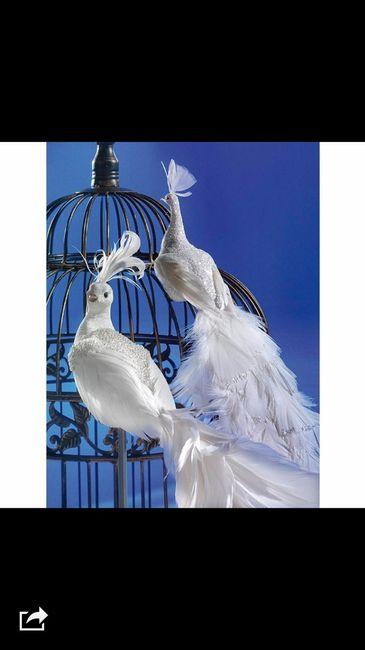 busco pajaros con plumas decoracion