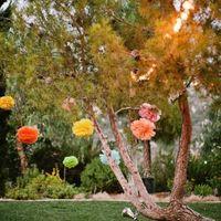 Ideas para decorar árboles zona aperitivo? - 1