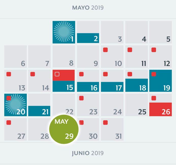 nuevo buscadoras Mayo 2019 5