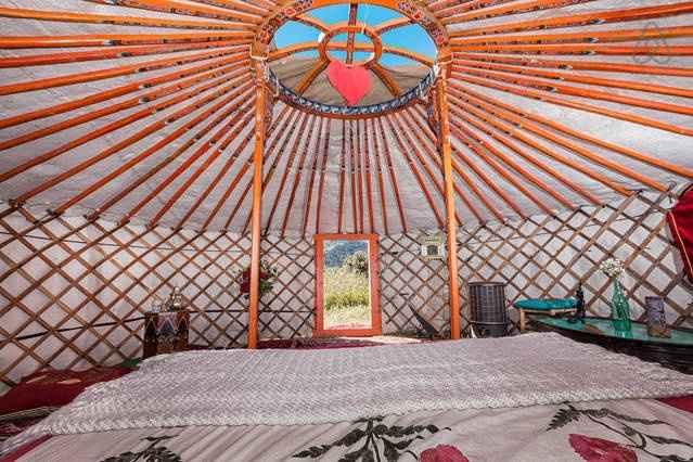 Mongolian Yurta Airbnb