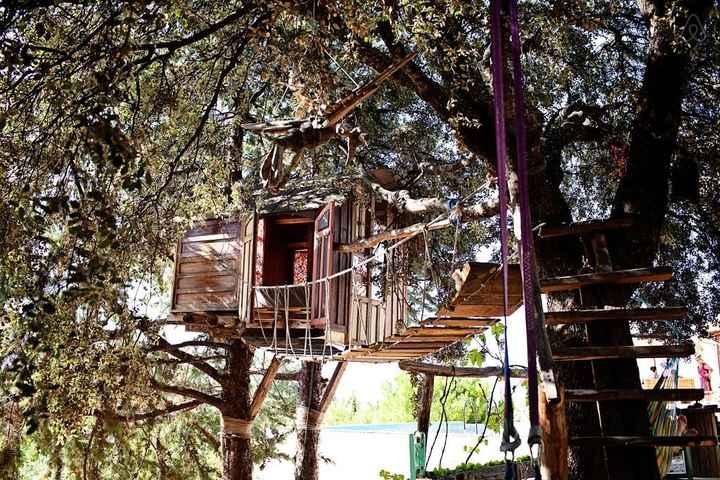 Casa del árbol Airbnb