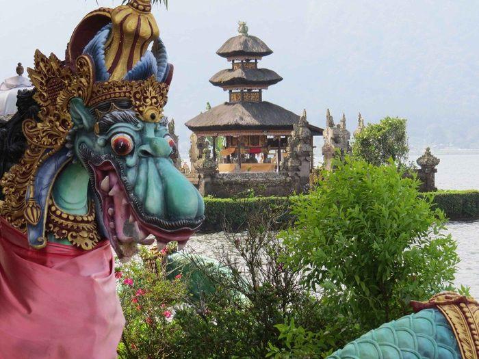 Cande check-in con destino a Singapur e Indonesia 7