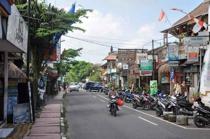 Monkey Forest street