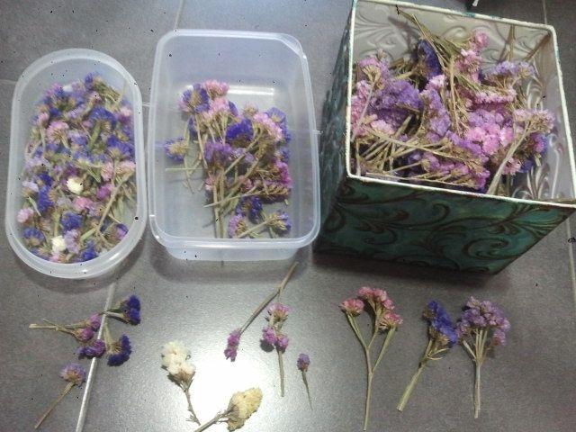 Utilidad flores siempre vivas, para ahorrar en decoracion - 3