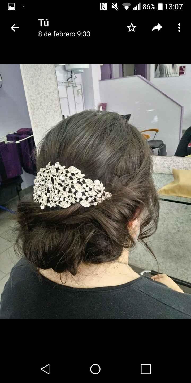 Acessorios en el pelo 1