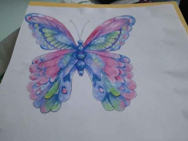 mis mariposas