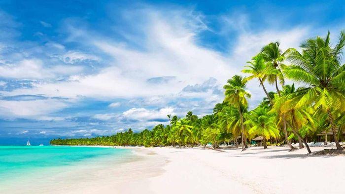 Novi@s Punta Cana 2019. ¡Preséntate! 1