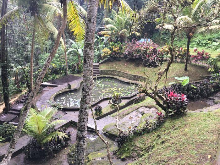 Bali - Mi luna de miel. Tip´s y consejos 14