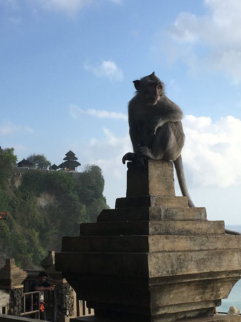 Bali - Mi luna de miel. Tip´s y consejos 43