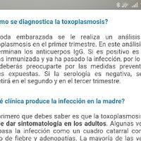 Toxoplasmosis - 1