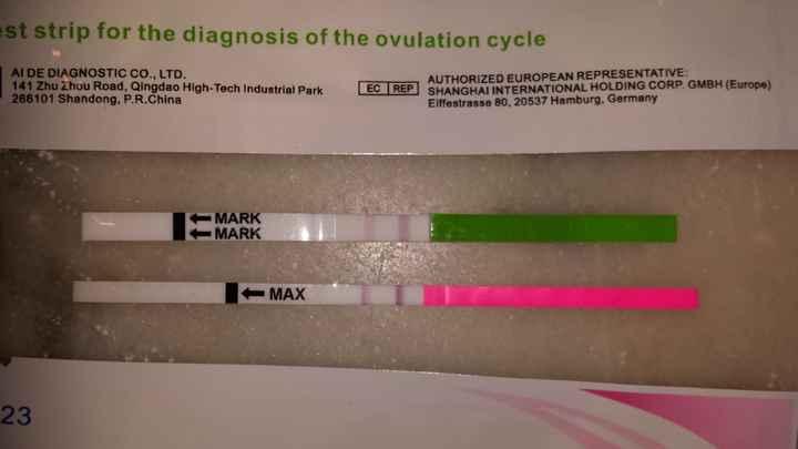 Buscadoras después de uno o varios abortos  - 1