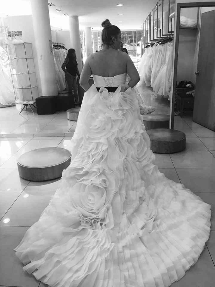 Ya tengo el vestido!!!! - 1