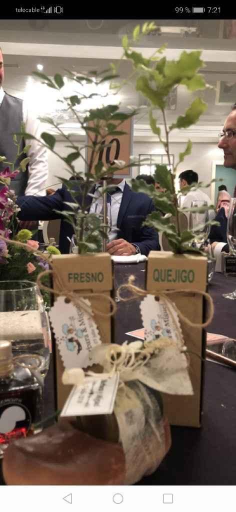 Bolsas papel para regalar plantas - 2